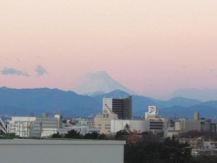 リッチモンドホテル東京武蔵野屋上より