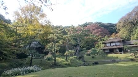 横浜_三渓園_紅葉
