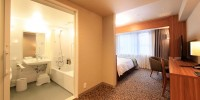 Wheelchair Accessible Twin / Triple Room